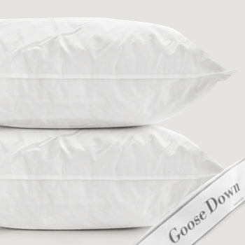 Goose Cushion 900g