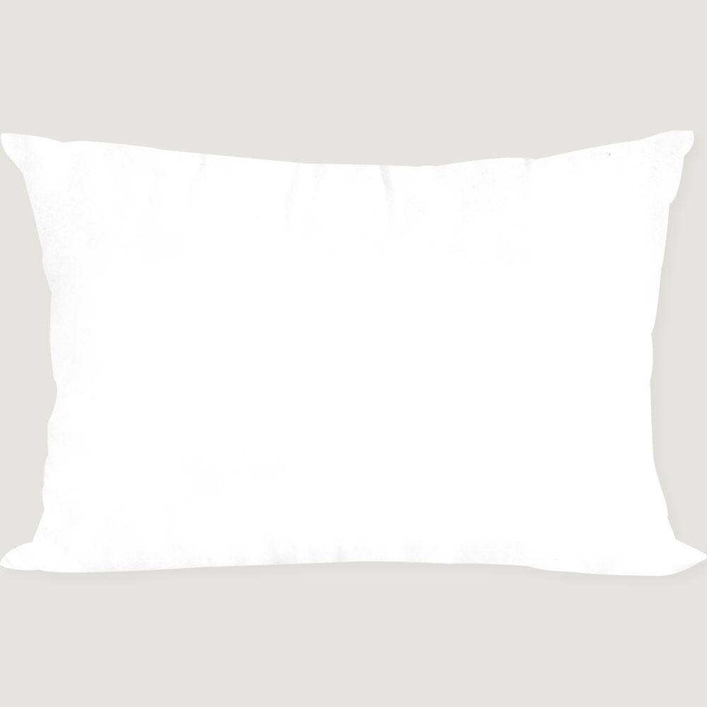 Pure White Pillow 50X70 (솜)